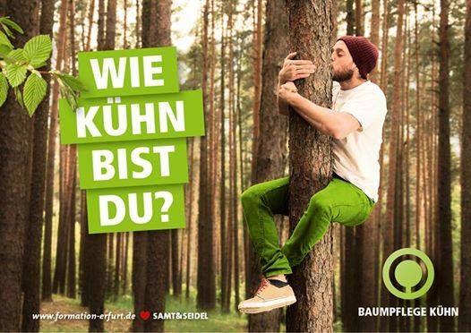 Kletterausrüstung Baumpflege : Baumpfleger ausbildung zum fachagrarwirt baumkletterer