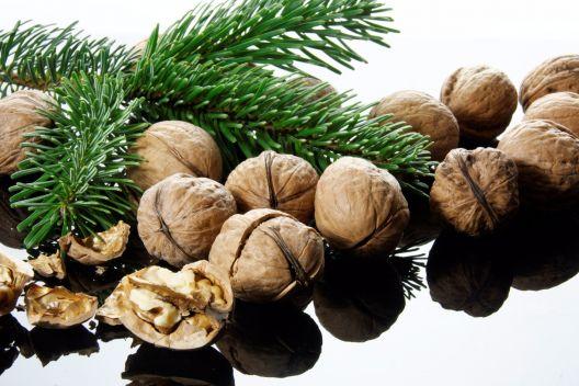 Nordmanntanne, Weihnachtsbaum