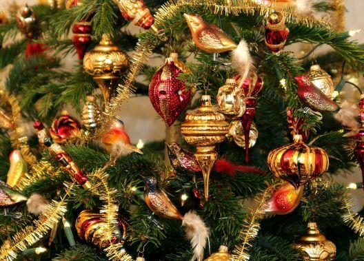 Welcher weihnachtsbaum riecht gut